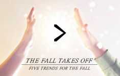The_Fall_Takes_Off_00