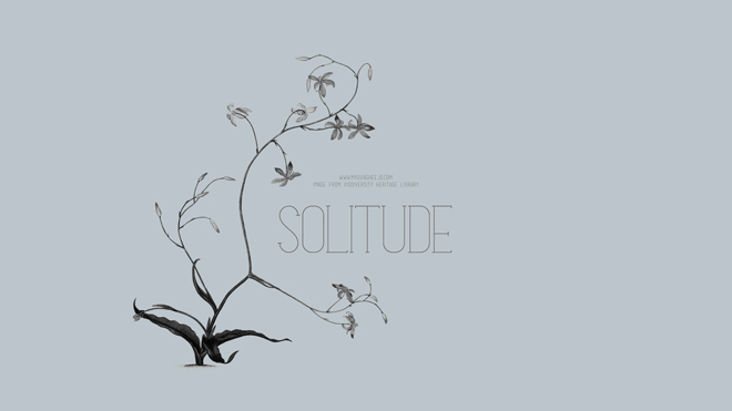 Solitude_Wallpaper_01